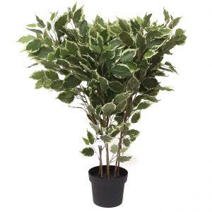 עציץ מלאכותי פיקוס ירוק