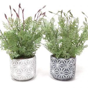 סט*2 בתי עציץ עם צמח מלאכותי מובנה