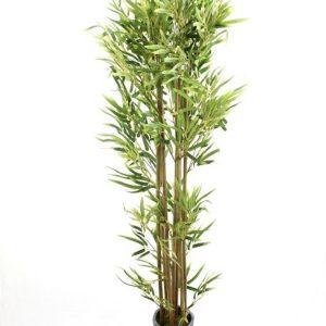 עץ במבוק איכותי 160