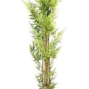 עץ במבוק איכותי 170