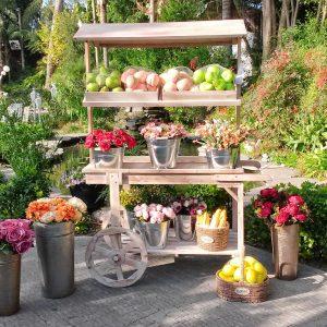 עגלת עץ לתצוגת פרחים