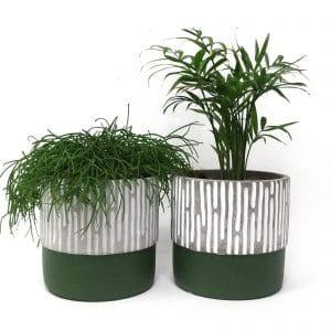 זוג עציצי בטון S