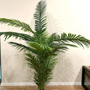 עץ דקל אריקה מלאכותי ענק | 200