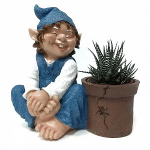 גמד גינה כחול | RIDENDO